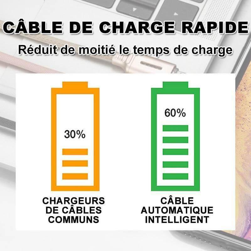 Le câble de charge rapide intelligent - intelicut