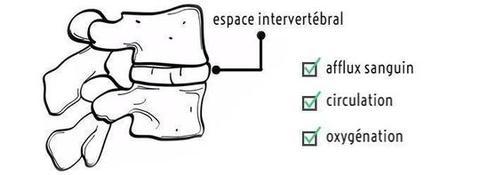 cervelax intervertébral